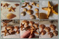 Ariel's Seashells 2
